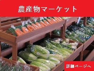 農産物マーケット