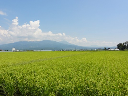 磐梯山を西方から望む