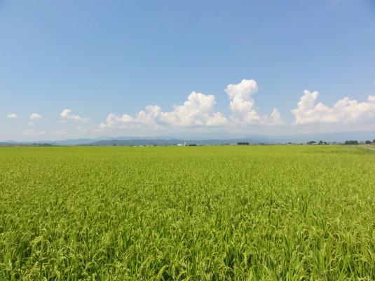 飯豊山を見る(三川付近)
